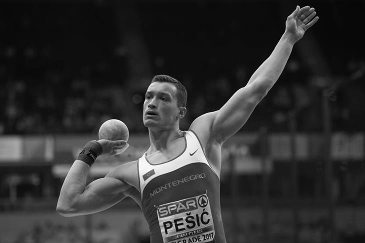 Darko Pesic ()