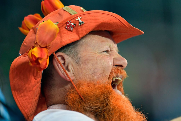 Dutch Fan Beard ()