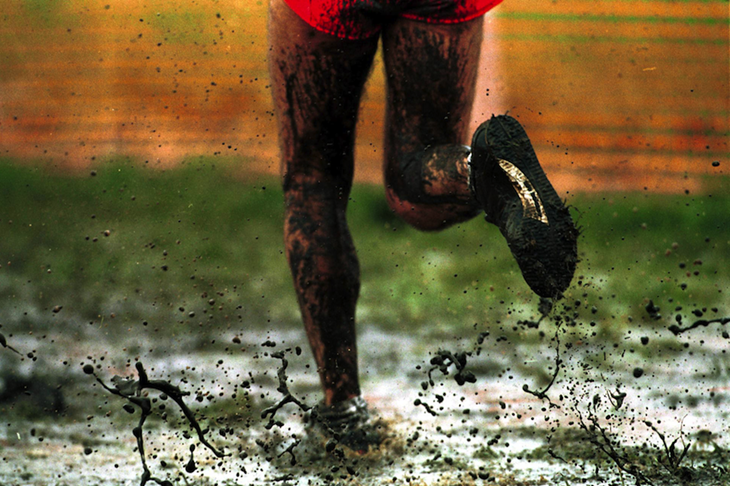 Mud sweat and tears ()
